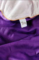 purple rain detailed
